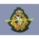 ROYAL ARMY DENTAL CORPS BERET CAP BADGE