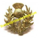 Thistle Gold Metal Cap Badge